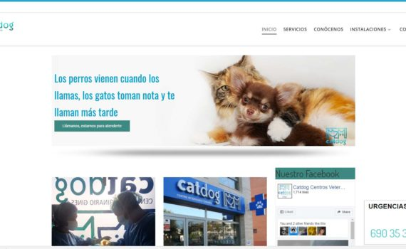 web clinica veterinaria catdog